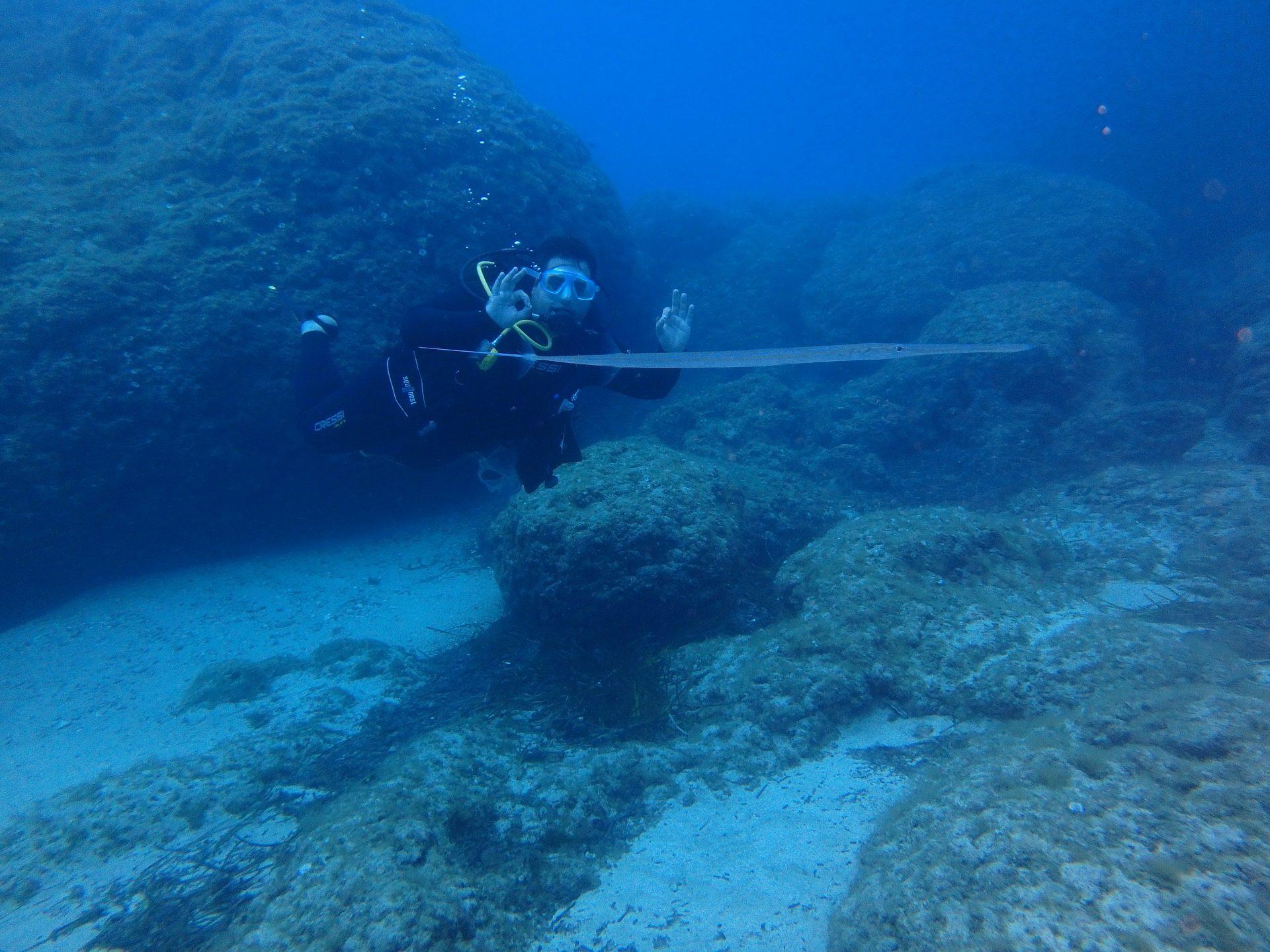 Scuba diving, Taucher, Meer, Fisch-Querflöte, Mediterranean - Wallpaper HD - Prof.-falken.com