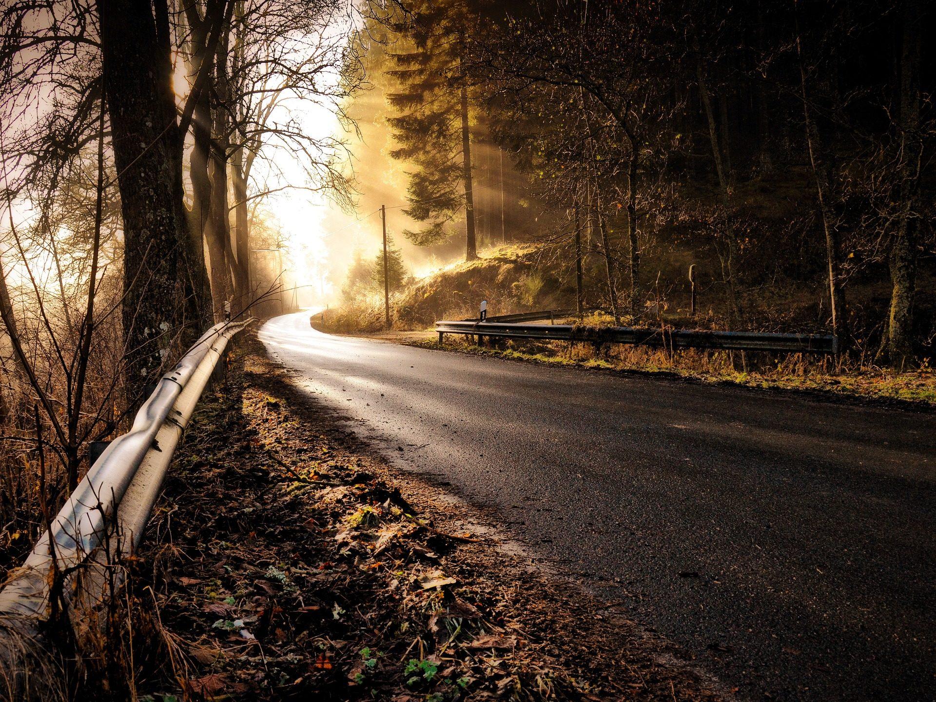 carretera, Дорога, лес, деревья, туман, гало, лучи, свет, Полутень - Обои HD - Профессор falken.com