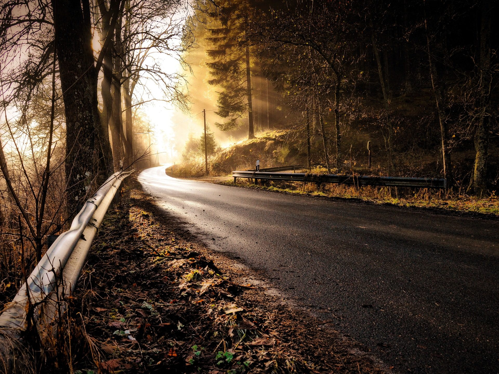 carretera, Straße, Wald, Bäume, Nebel, Halos, Strahlen, Licht, Halbschatten - Wallpaper HD - Prof.-falken.com