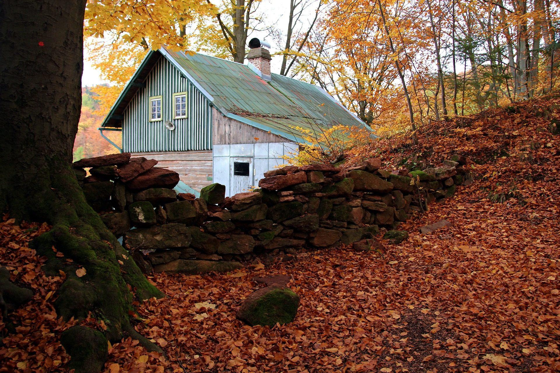 房子, 卡巴纳, 叶子, 干, 石头, 树, 秋天, 树木 - 高清壁纸 - 教授-falken.com