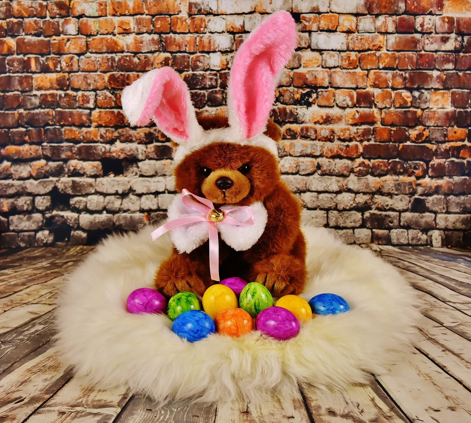 Teddy, ovos, Páscoa, colorido, Coelho, orelhas - Papéis de parede HD - Professor-falken.com