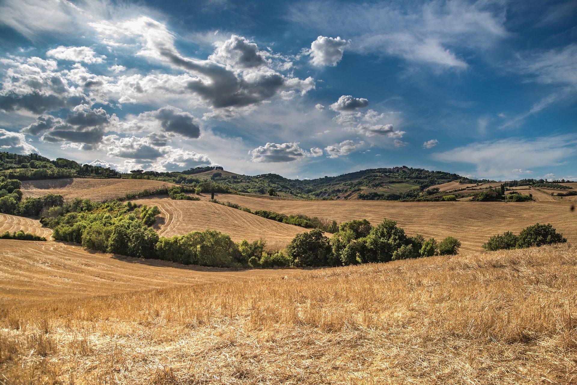 Pradera, Hill, árvores, Céu, nuvens, Toscano, Itália - Papéis de parede HD - Professor-falken.com