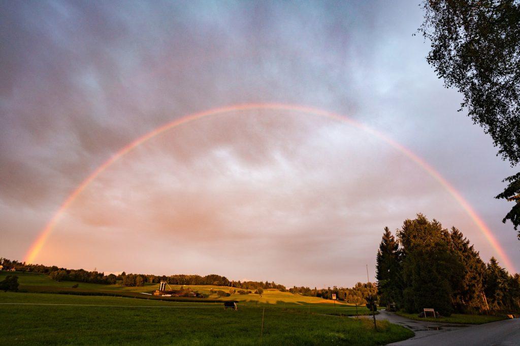 prado, árboles, arcoiris, nubes, nublado, 1704270815