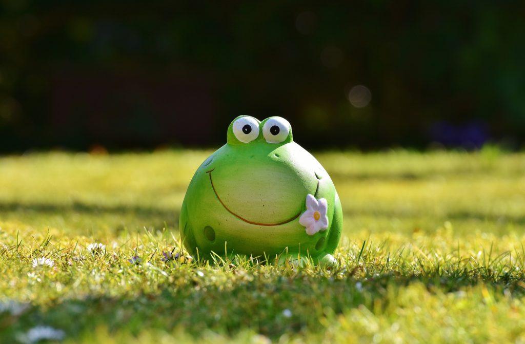 青蛙, 图, 花园, 草坪, 花, 微笑, 1704161123