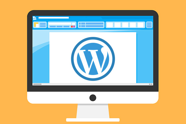 Como remover o modo visual do editor do WordPress