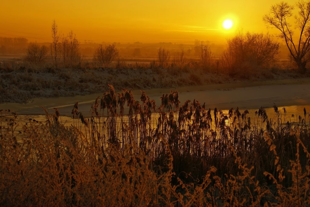 atardecer, río, campo, cielo, anaranjado, árboles, 1705271315