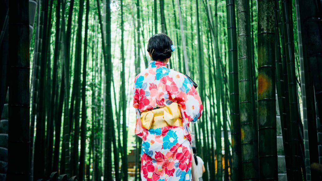 bosque, bambú, mujer, vestido, tradicional, kimono, japón, 1705290836