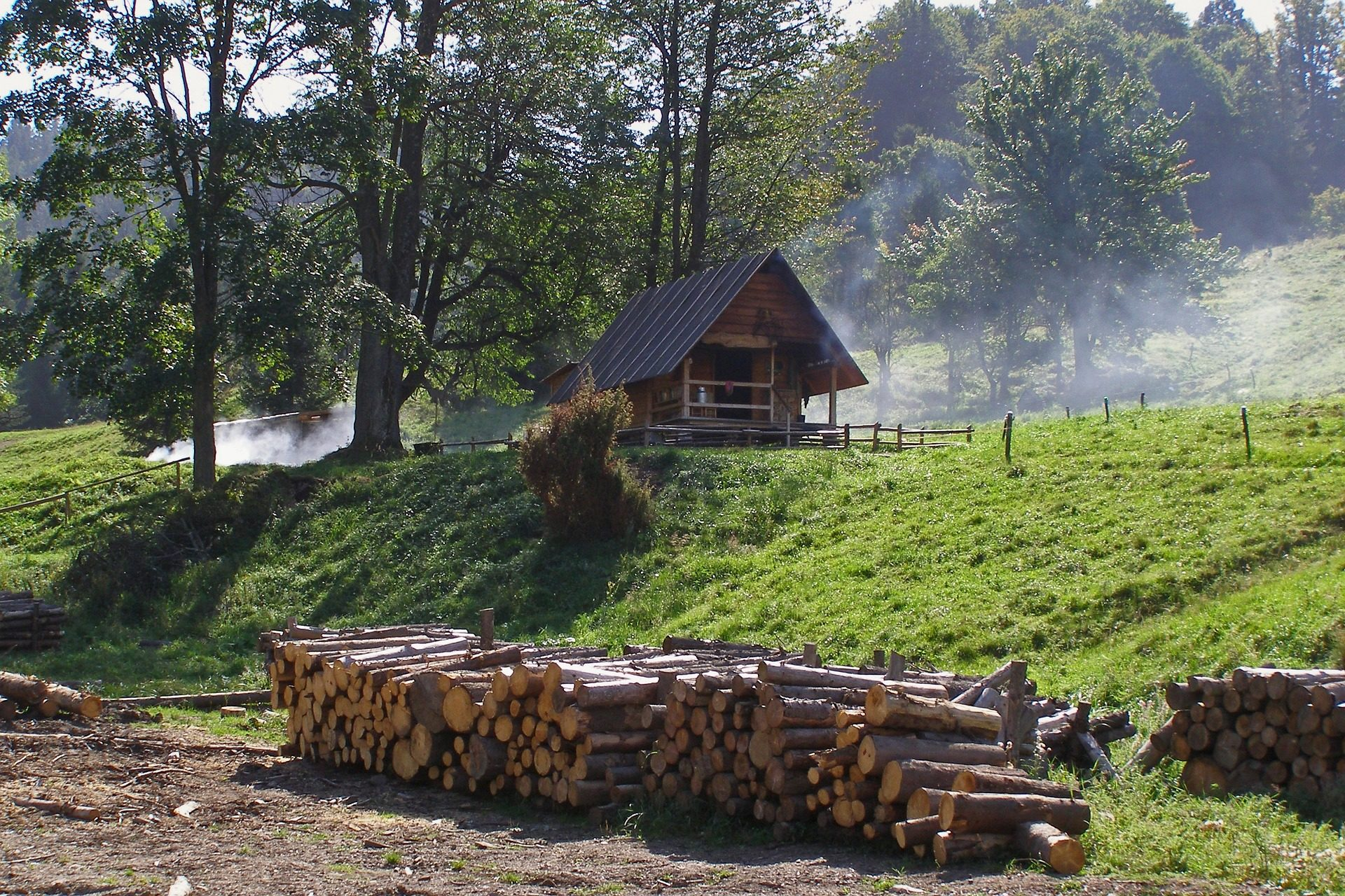 Fondo de pantalla de caba a bosque rboles troncos - Cabanas de madera en arboles ...