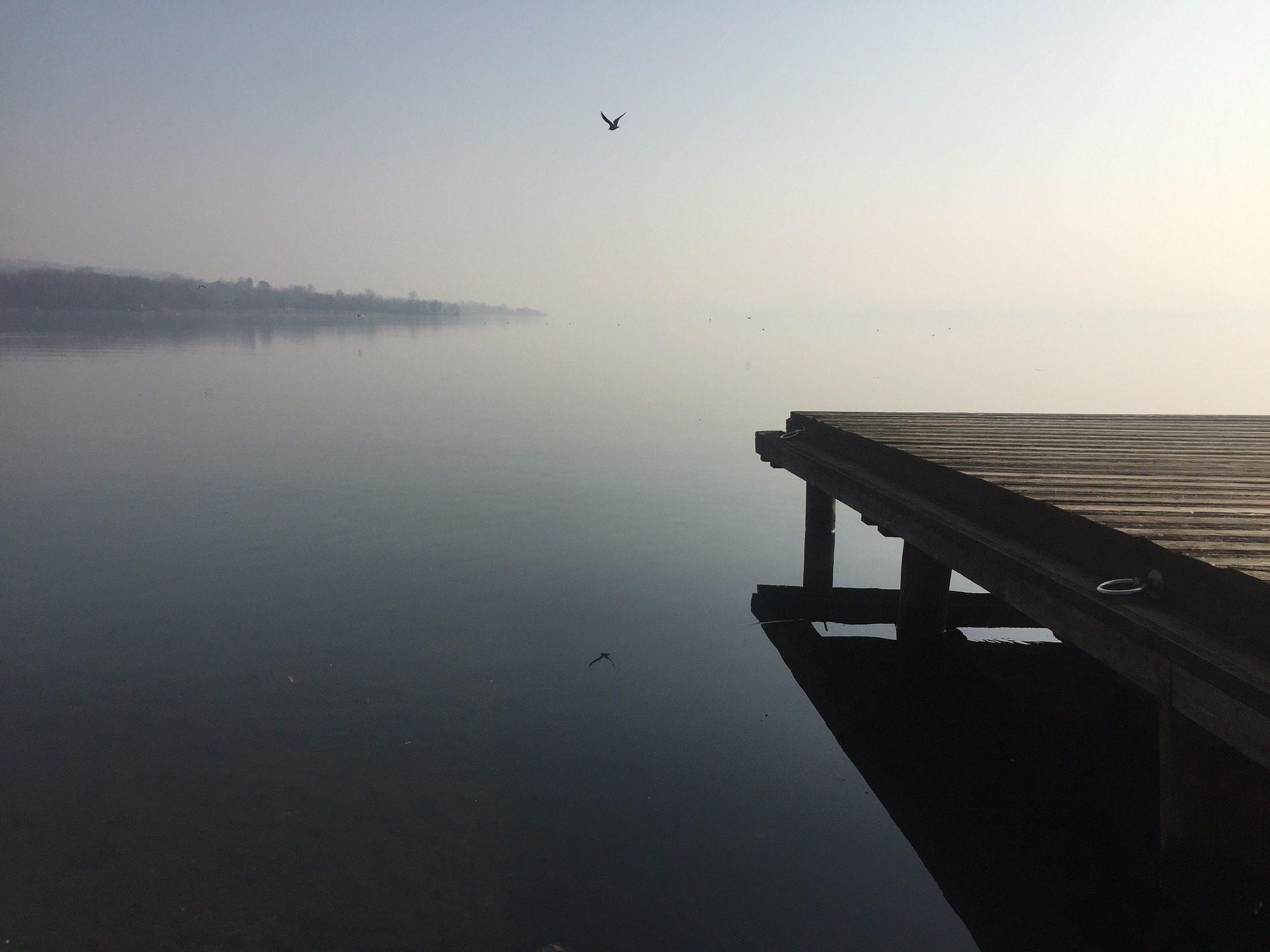 Озеро, спокойствие, Весна, Эмбаркадеро, Чайка, отражение, туман - Обои HD - Профессор falken.com