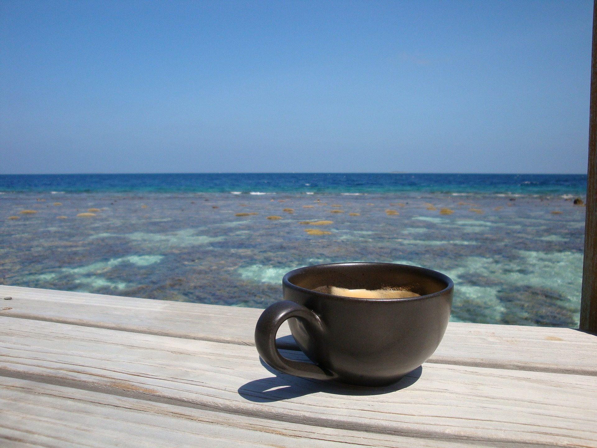 كأس, القهوة, إفطار, الجنة, البحر, المحيط, جزر المالديف - خلفيات عالية الدقة - أستاذ falken.com