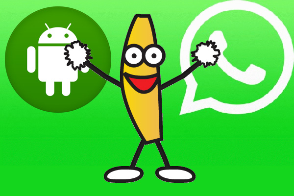 Come inviare gif animate su WhatsApp (Android)