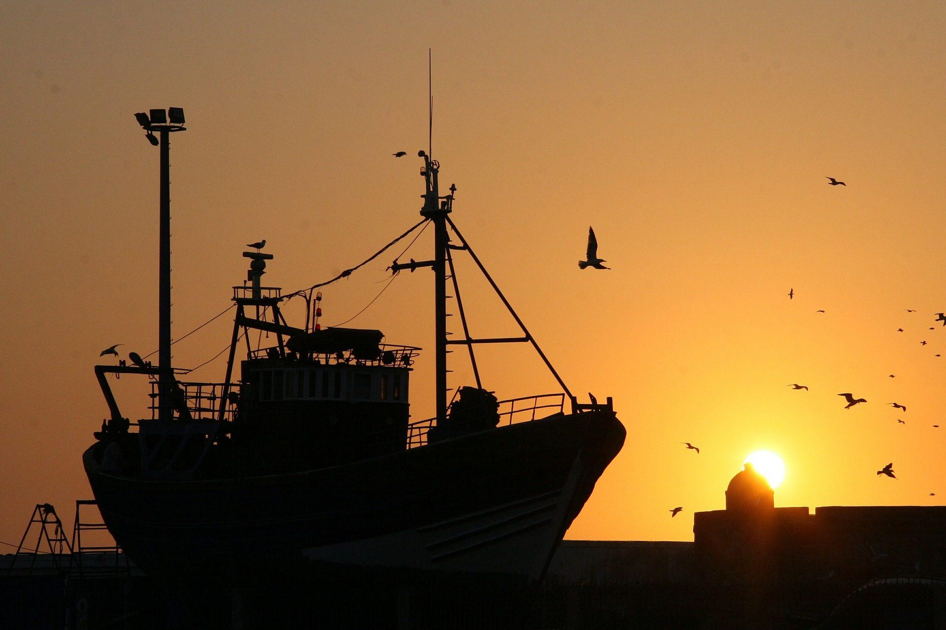 नाव, pesquero, मछली पकड़ने, seagulls, सूर्यास्त, सागर, छायादार - HD वॉलपेपर - प्रोफेसर-falken.com