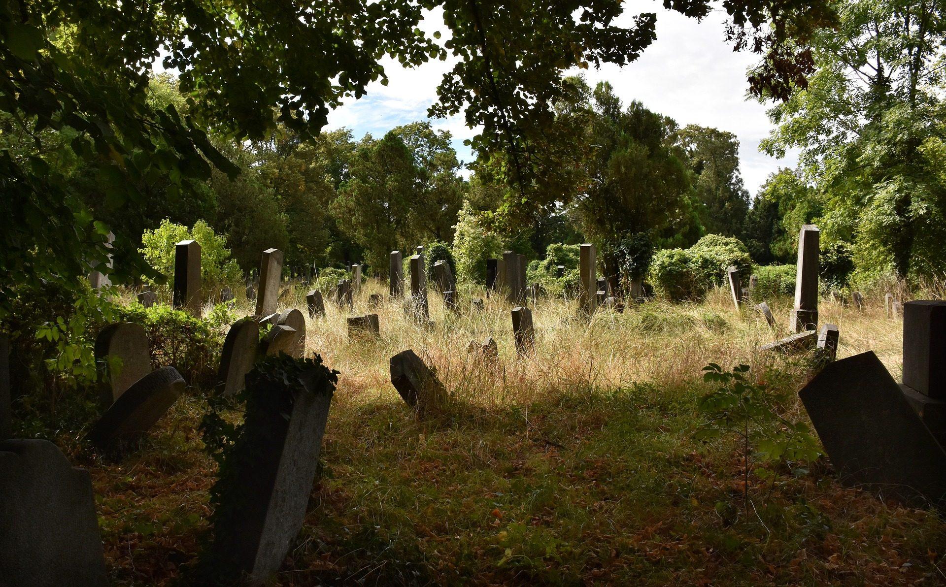 Cimitero, Campo Santo, pietre tombali, lastre, Graves, foresta - Sfondi HD - Professor-falken.com