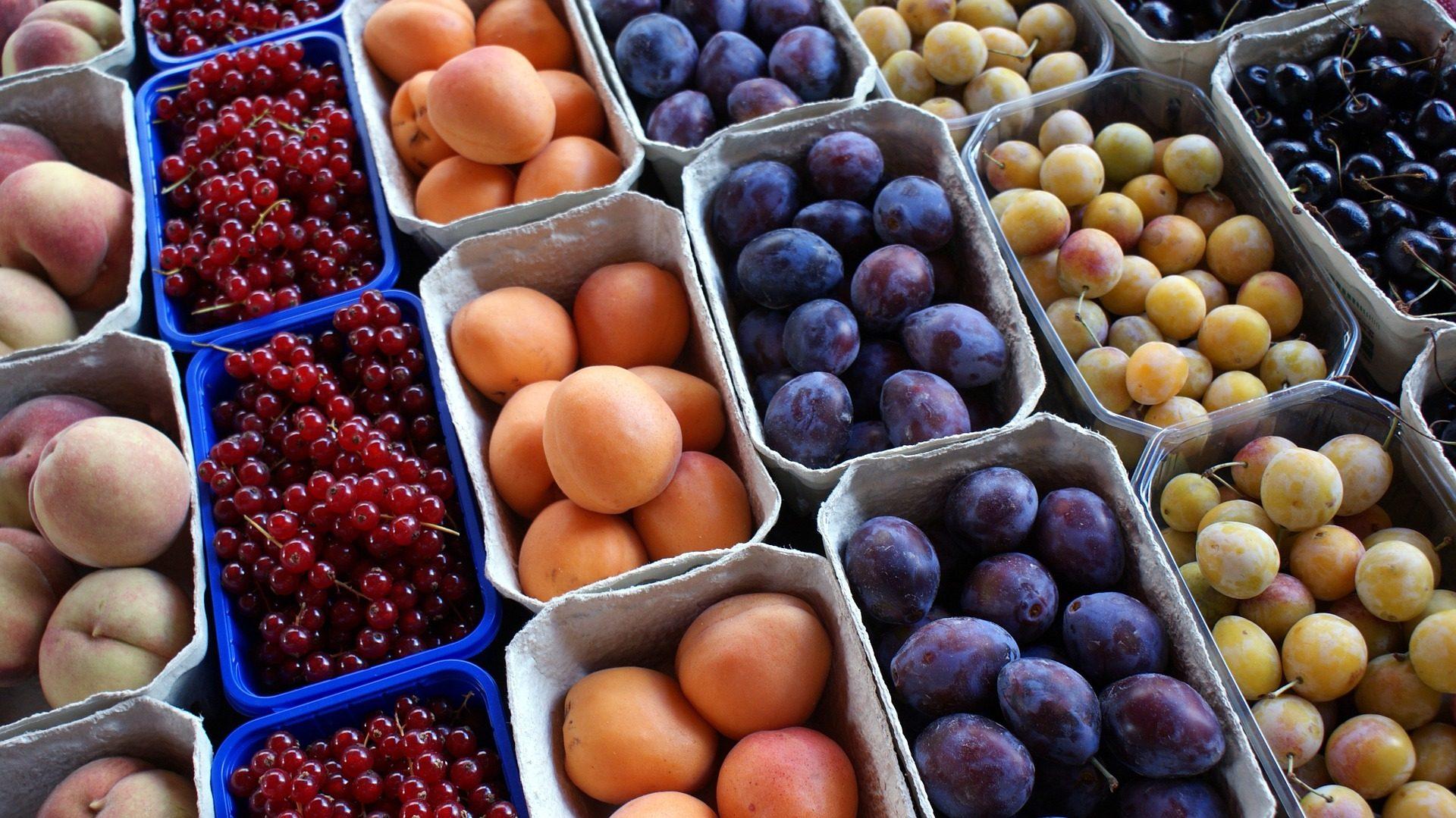 frutas, bandejas, colorido, diversidade, saudável, dieta - Papéis de parede HD - Professor-falken.com