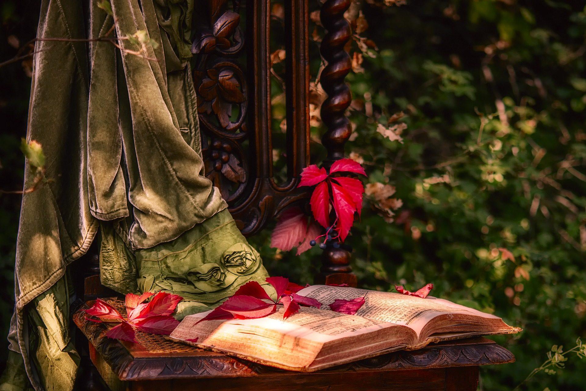 Βιβλίο, Καρέκλα, κάθισμα, Κήπος, φύλλα - Wallpapers HD - Professor-falken.com