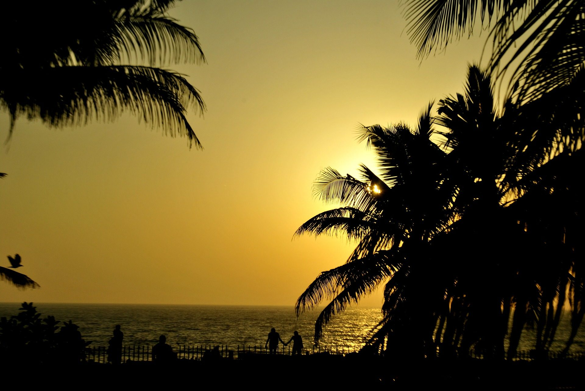 Meer, Ozean, Palmen, Sonnenuntergang, Silhouetten, Menschen - Wallpaper HD - Prof.-falken.com