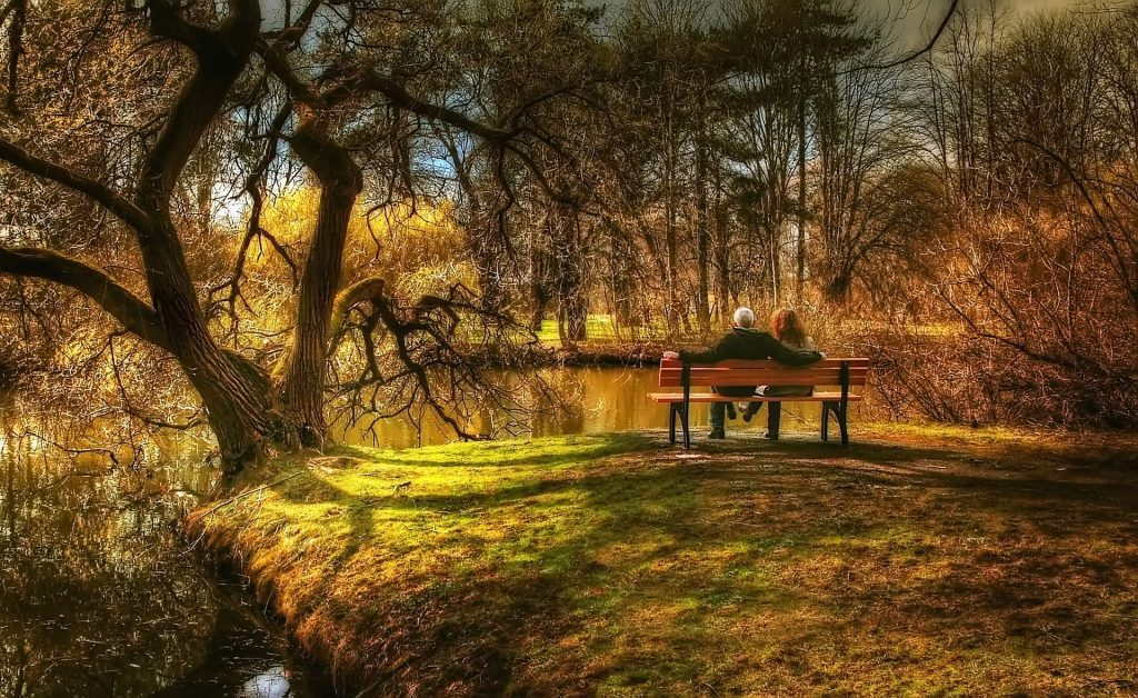 pareja, banco, bosque, lago, árboles, relax, 1706180825