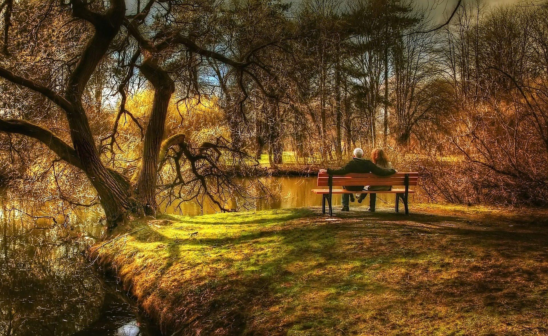 coppia, Banca, foresta, lago, alberi, rilassarsi - Sfondi HD - Professor-falken.com