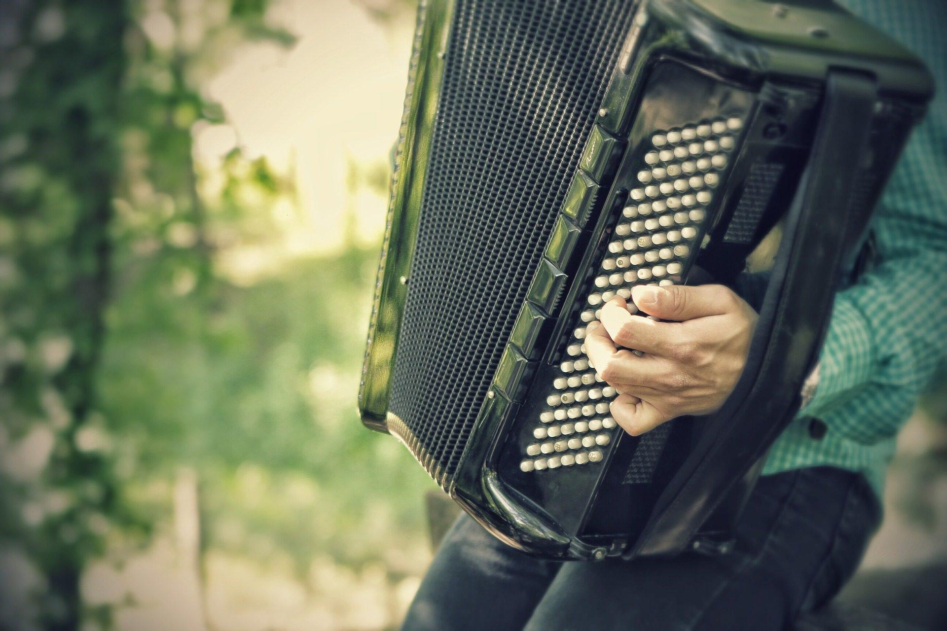 acordeón, músico, callejero, instrumento, dificultad - Fondos de Pantalla HD - professor-falken.com