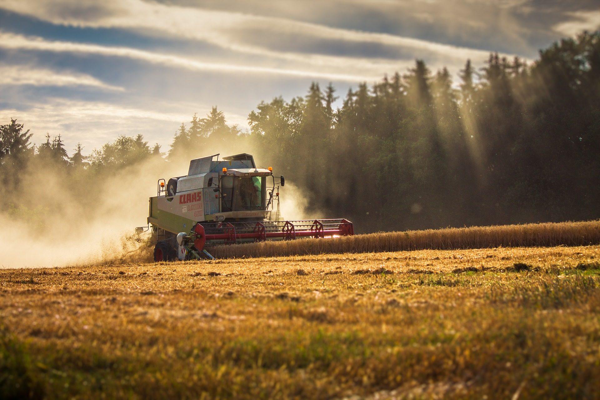 машина, комбинат, поле, Выращивание, Сельское хозяйство, Зерновые культуры - Обои HD - Профессор falken.com