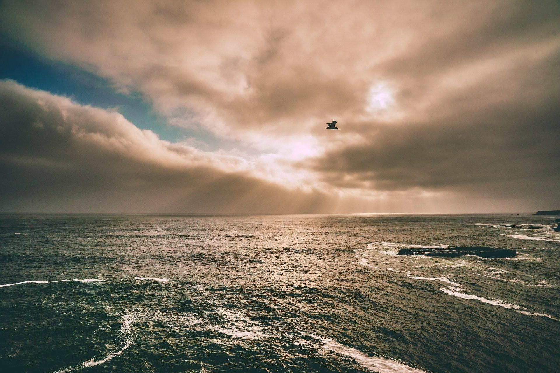 Море, Океан, облака, Небо, Чайка, необъятность - Обои HD - Профессор falken.com