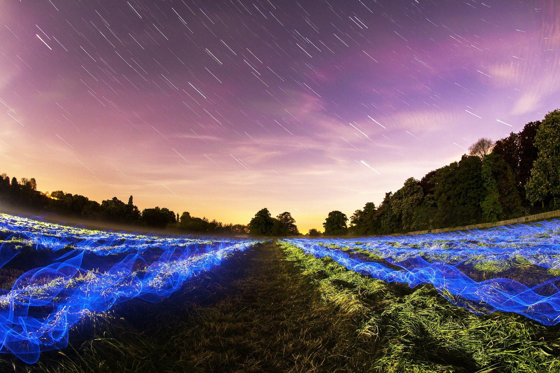 树木, 天空, 星级, 晚上, 晕 - 高清壁纸 - 教授-falken.com