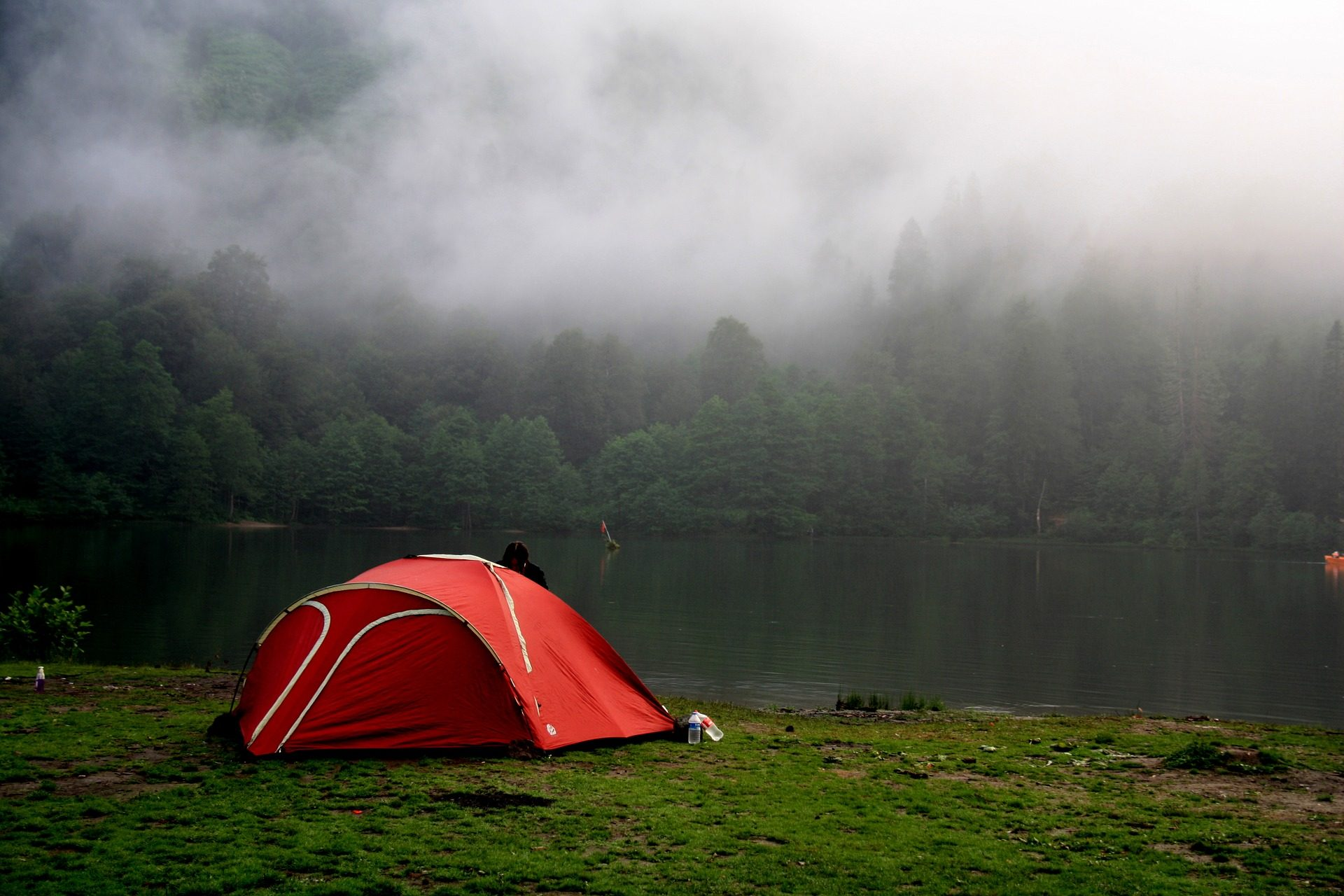 الغابات, الميدان, التخييم, بحيرة, متجر - خلفيات عالية الدقة - أستاذ falken.com