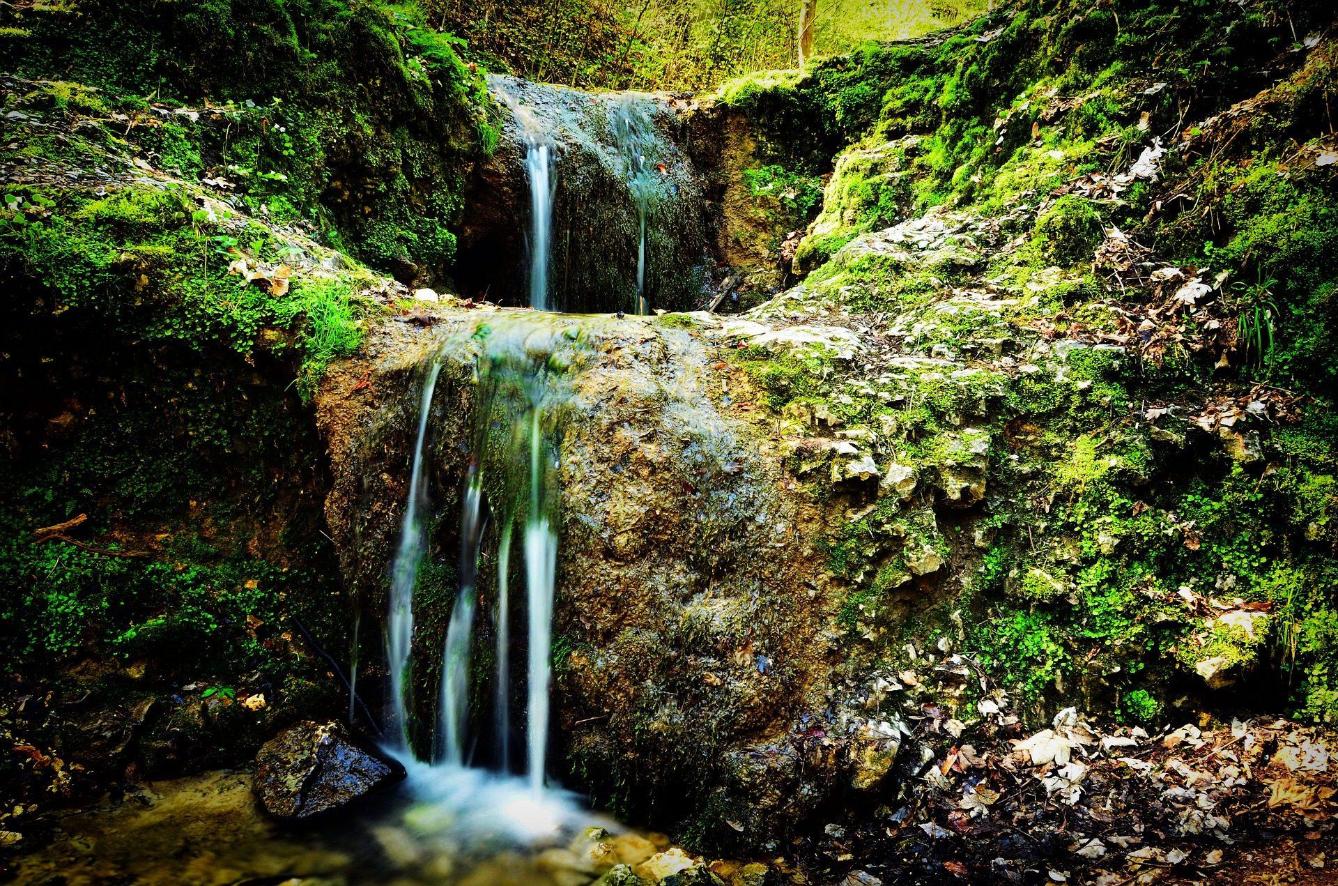 Falls, Cascadas, Forest, eau, humidité, Vegetación - Fonds d'écran HD - Professor-falken.com