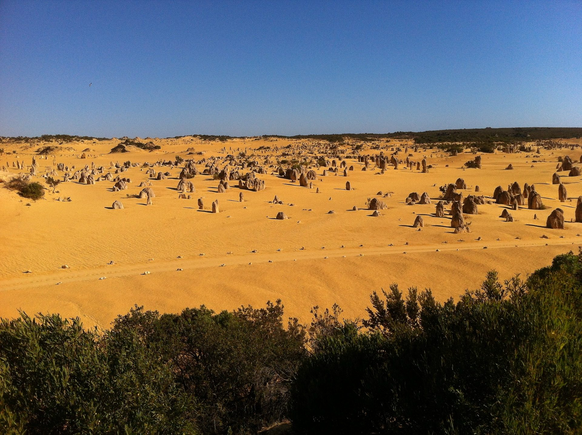 пустыня, песок, камни, Rocas, деревья, Австралия - Обои HD - Профессор falken.com