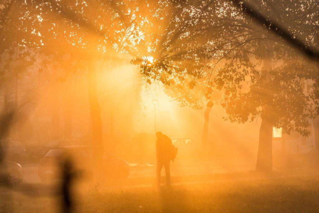 amanecer, luz, niebla, sol, siluetas, árboles, persona, anaranjado, 1710121835