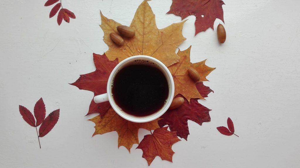 café, taza, hojas, bellotas, frutos, 1710030831