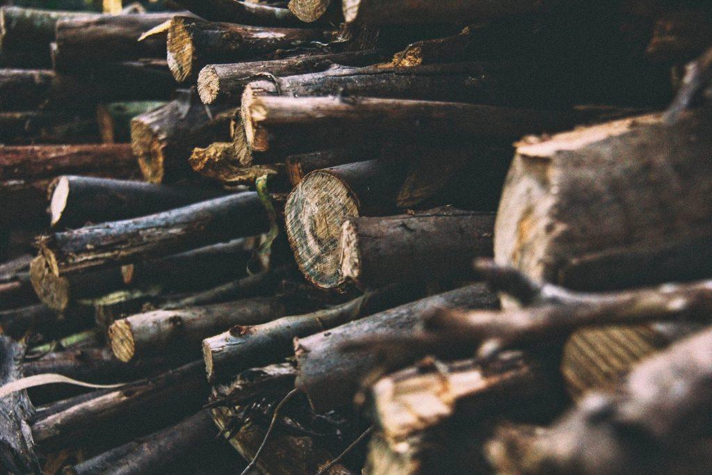 leña, troncos, ramas, madera, árboles, 1710192255