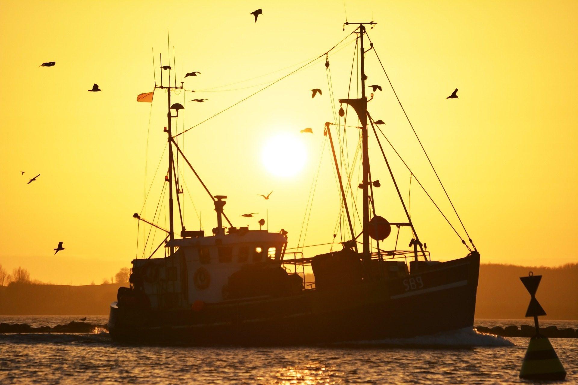 bateau, pesca, pêche, mouettes, Coucher de soleil, Mer - Fonds d'écran HD - Professor-falken.com