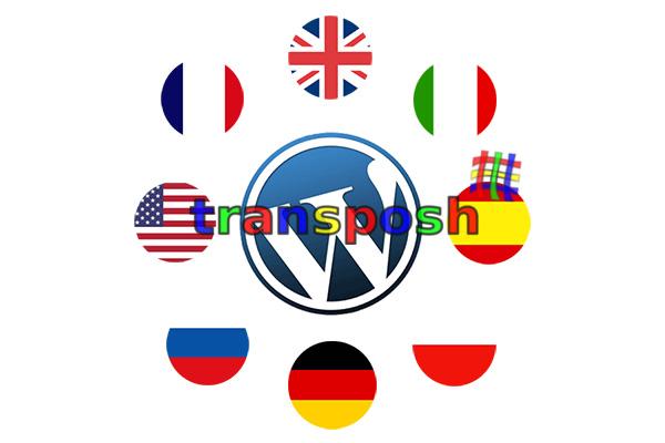 如何在 WordPress 中获取网页的当前语言, 如果使用 Transposh