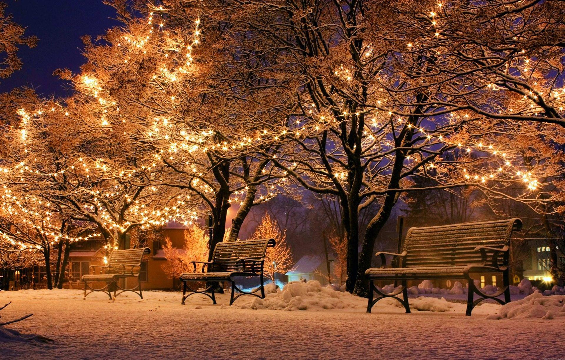 банки, Парк, деревья, фары, украшения, Рождество - Обои HD - Профессор falken.com