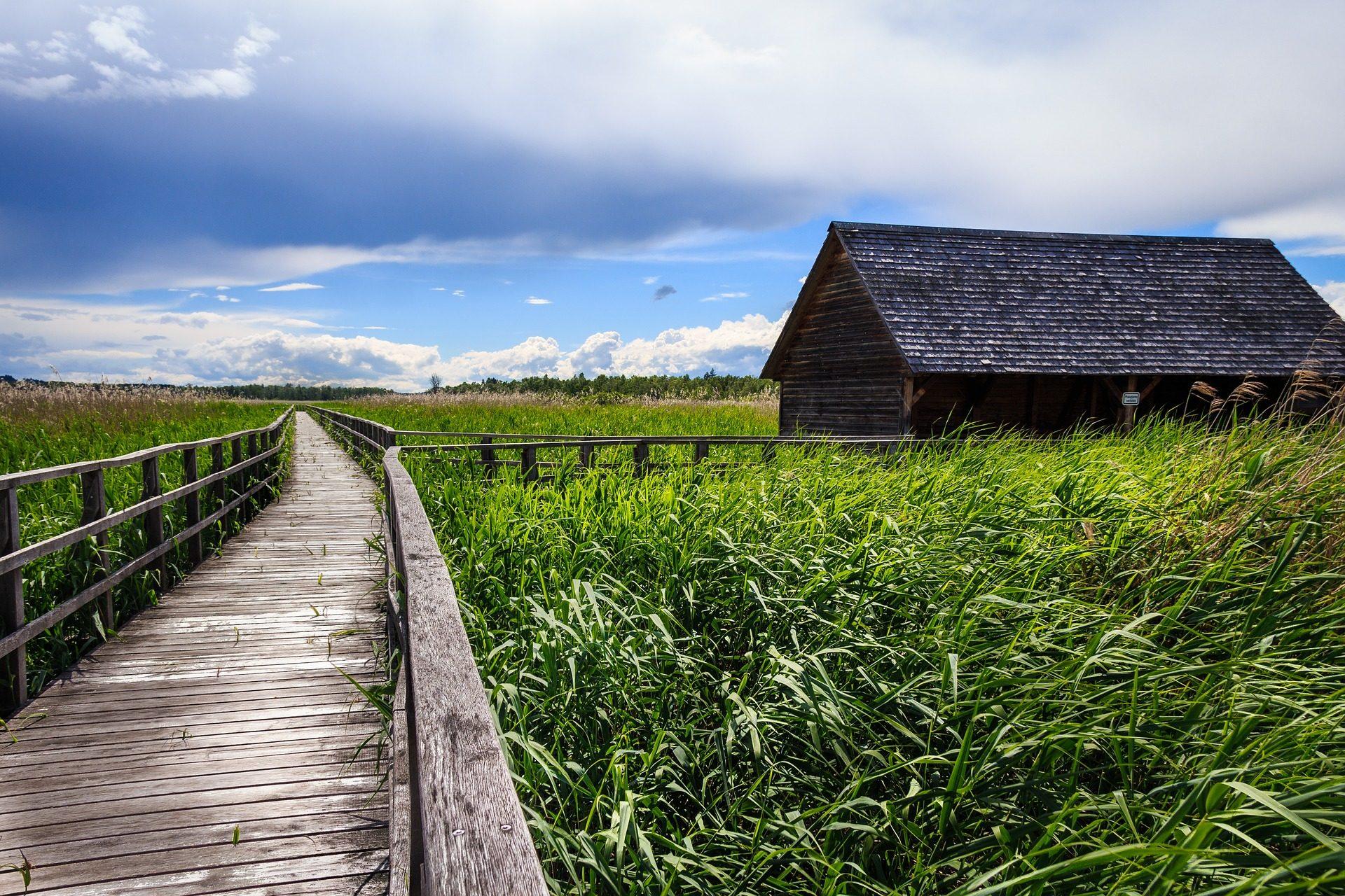 Strada, pasaje, passaggio, Casa, vegetazione, Cielo, nuvole, nuvoloso - Sfondi HD - Professor-falken.com
