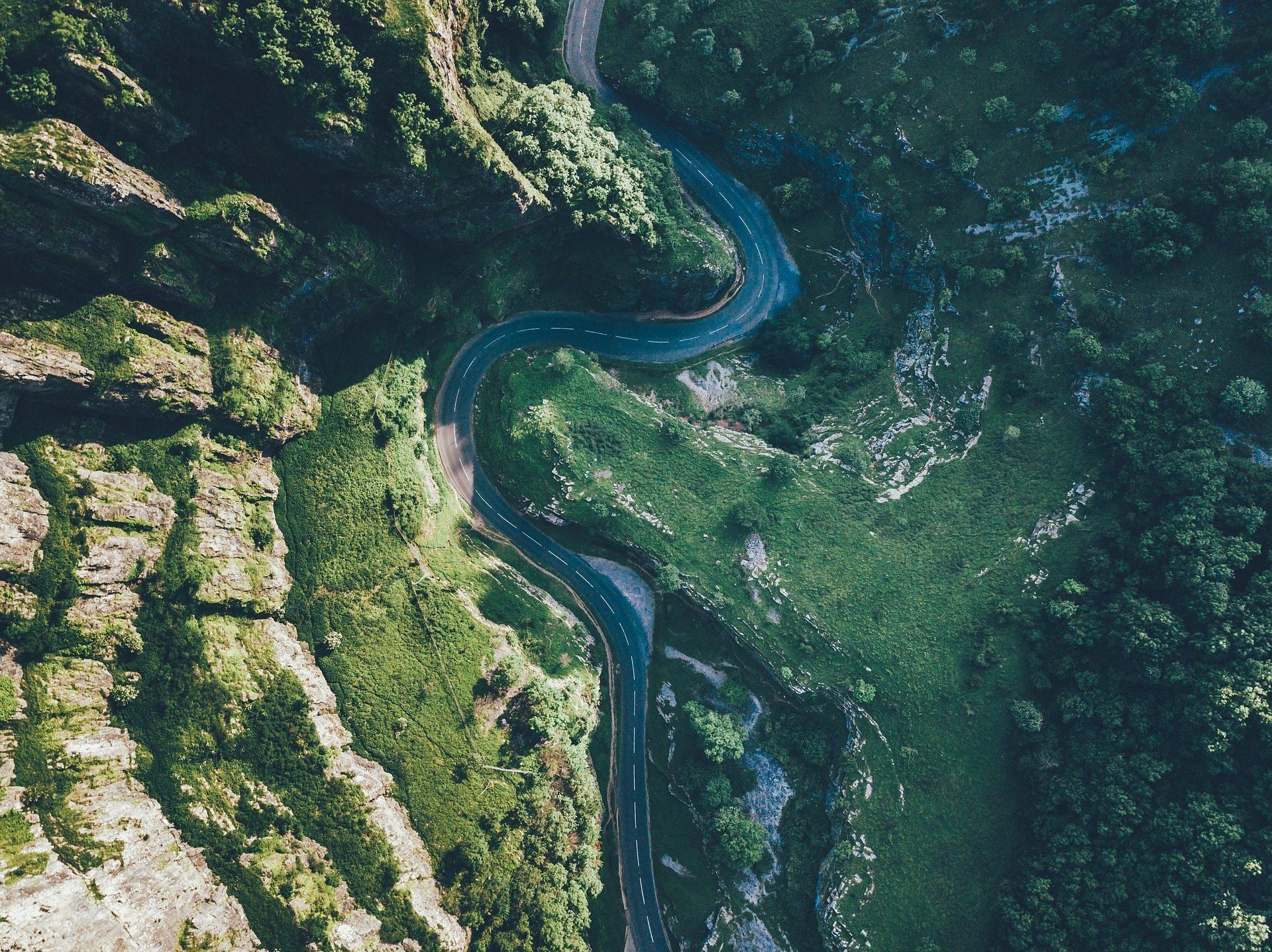 carretera, Дорога, кривые, деревья, растительность - Обои HD - Профессор falken.com