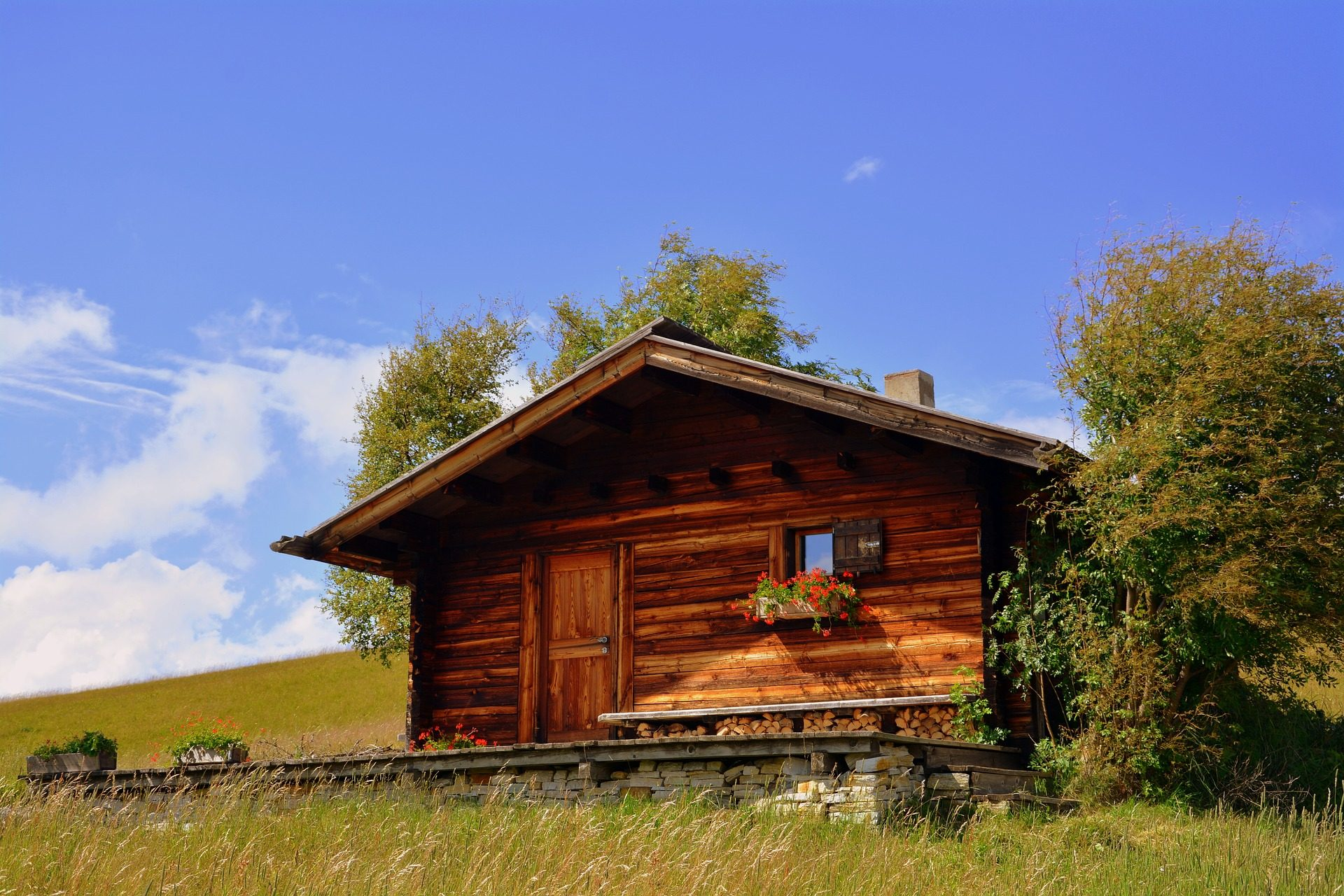 Maison, Pradera, domaine, bois, arbres - Fonds d'écran HD - Professor-falken.com