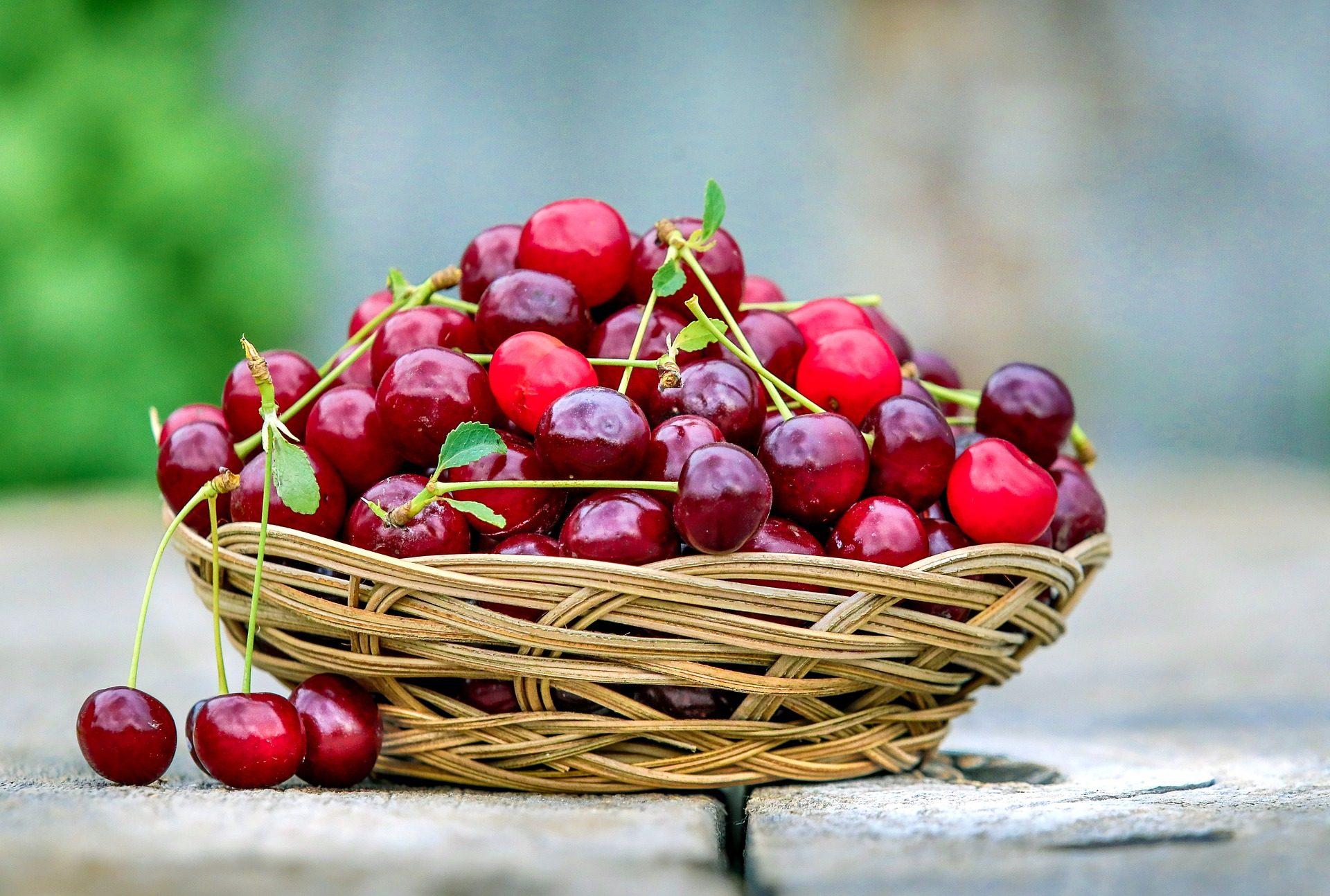 cerejas, demonstrativa, frutas, Rua, cesta, Vime - Papéis de parede HD - Professor-falken.com