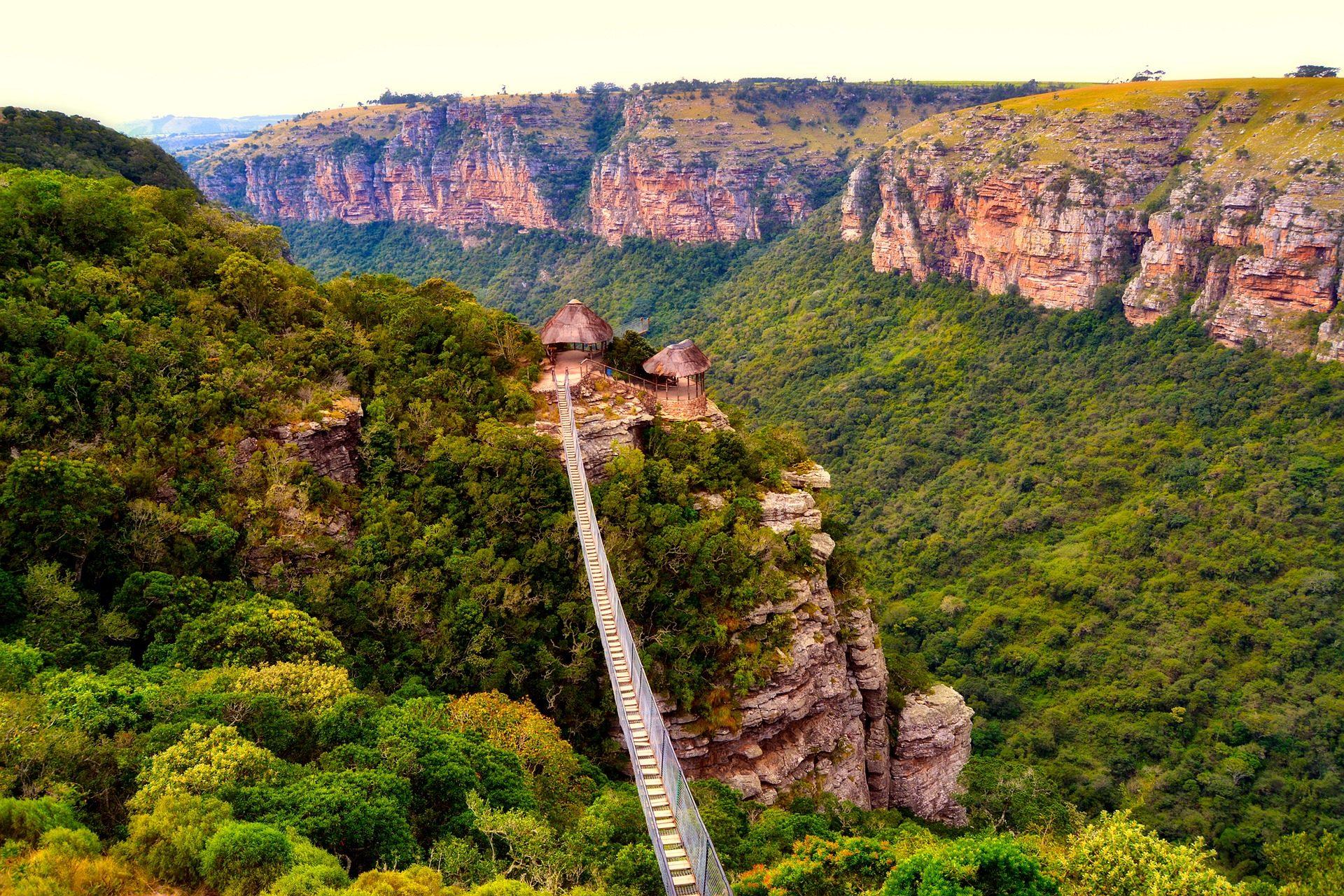 Монтаньяс, растительность, Долина, мост, Кулон, точка зрения, sudáfrica - Обои HD - Профессор falken.com