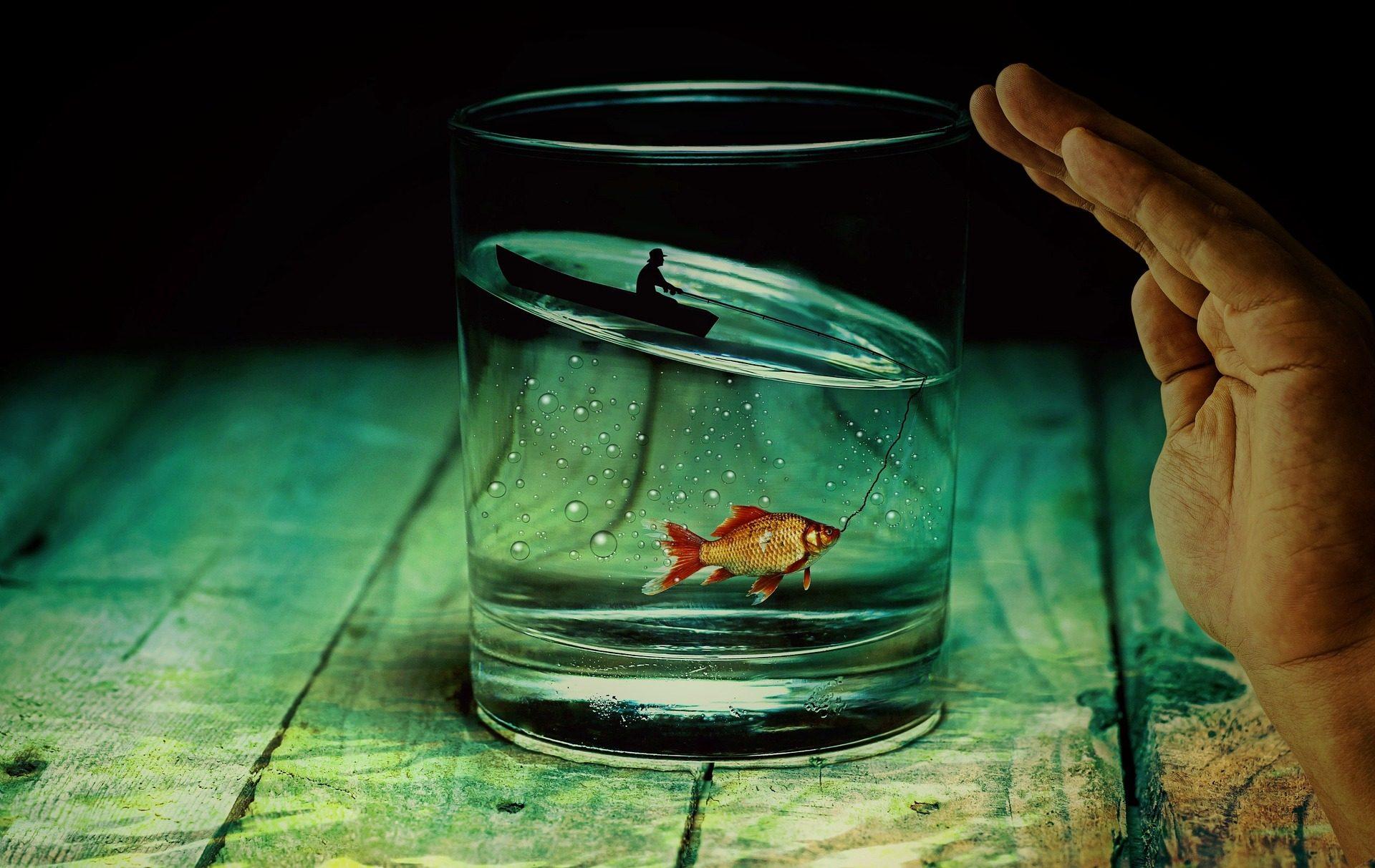 verre, eau, poisson, Pêcheur, Tableau, bois, main - Fonds d'écran HD - Professor-falken.com