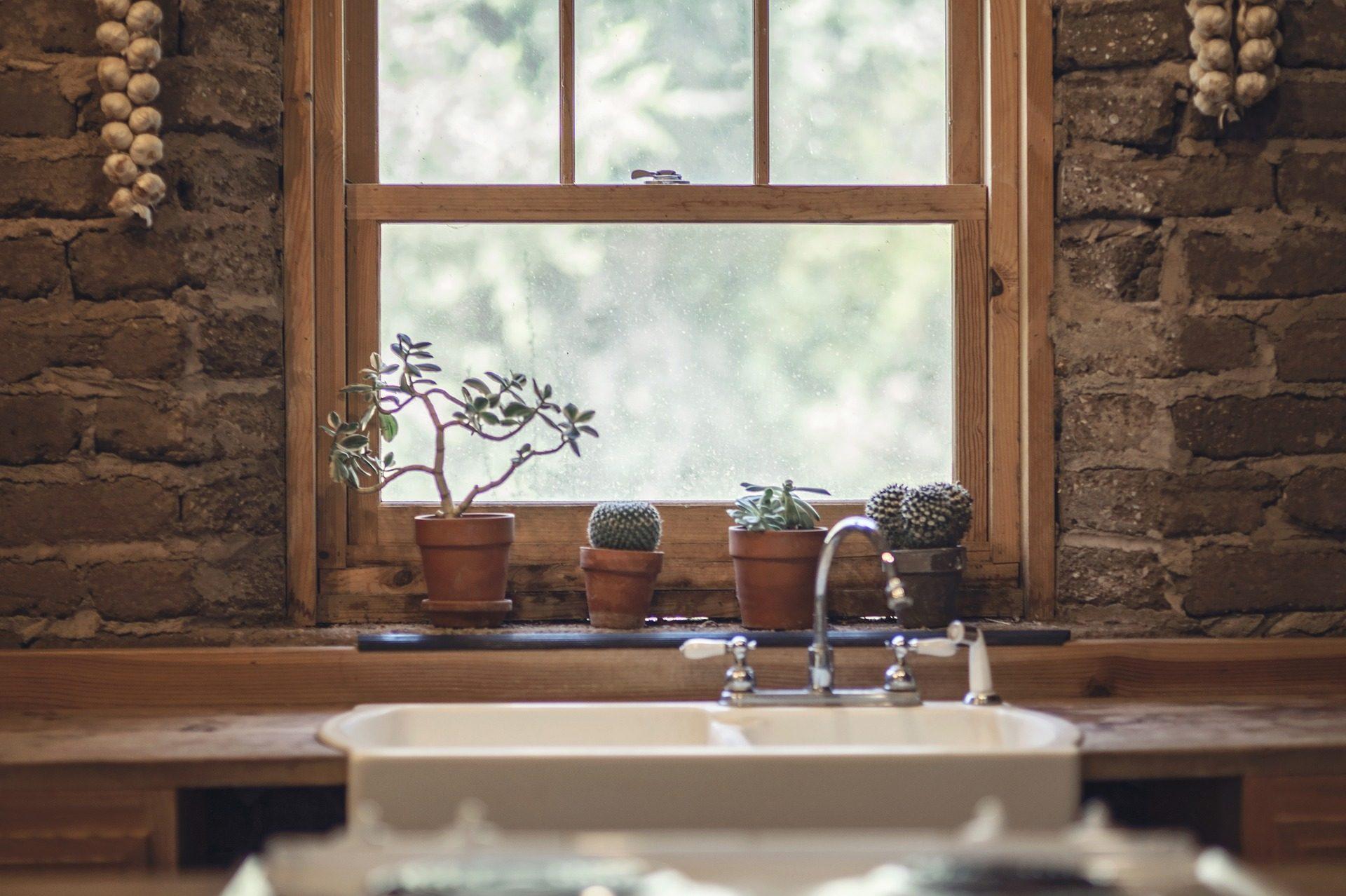 janela, pia, potenciômetros, cacto, alho, pedras - Papéis de parede HD - Professor-falken.com