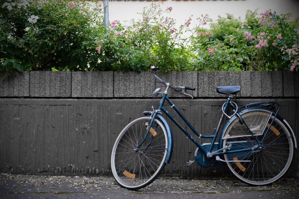 自行车, 栅栏, 墙上, 花, 花园, 1801160821