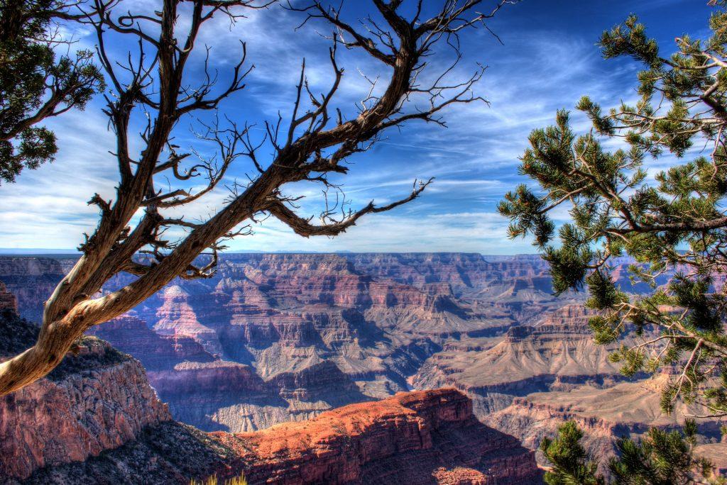 大峡谷, Montañas, 树木, 侵蚀, 高地, 亚利桑那州, 1801150829