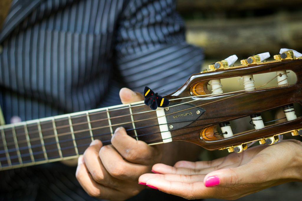 Guitarra, mastro, cadeias de caracteres, mãos, Borboleta, 1801142029