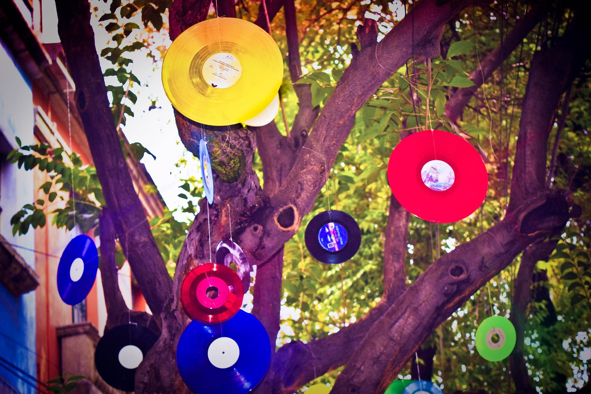 arbre, branches, disques, Vinyle, coloré - Fonds d'écran HD - Professor-falken.com