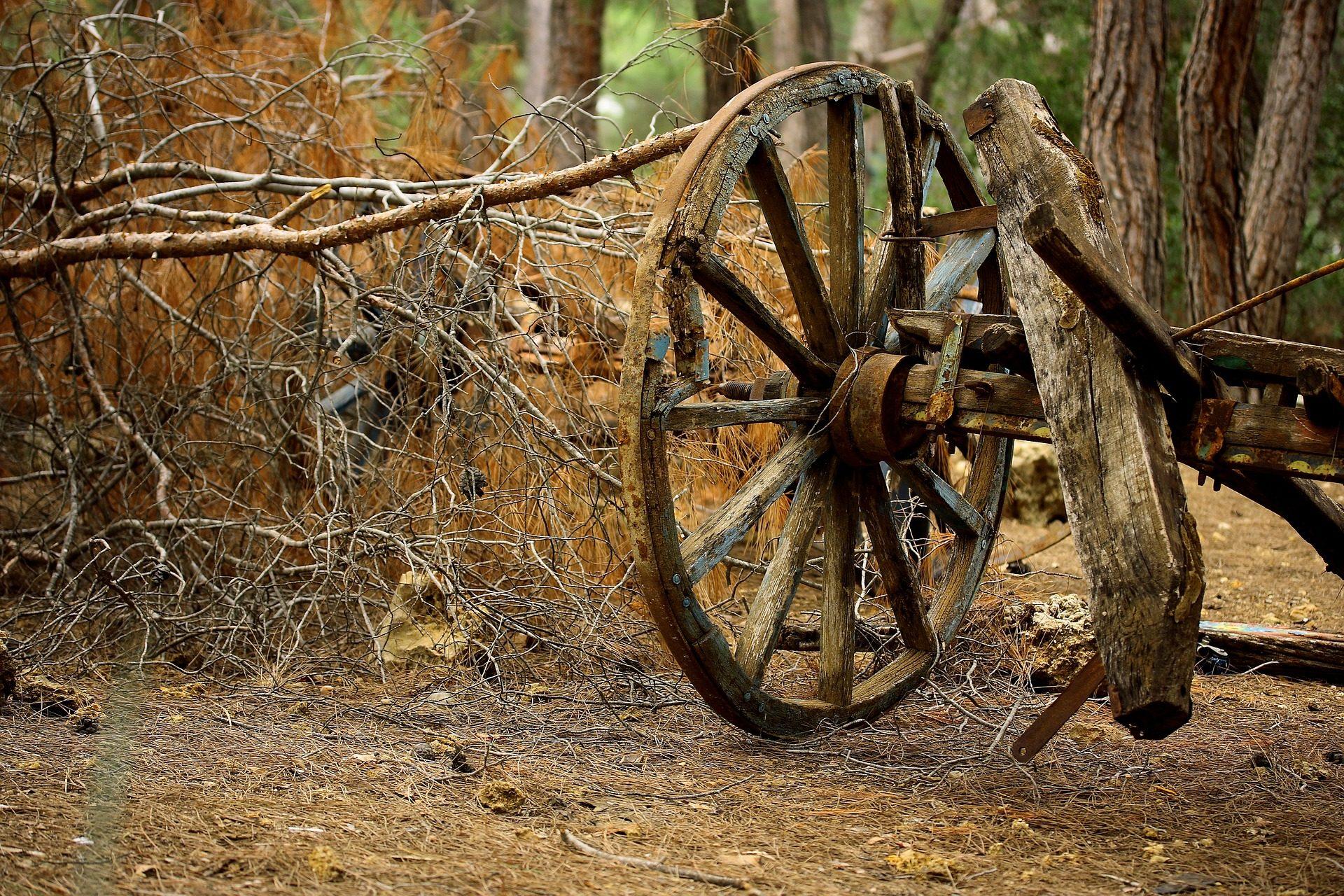 panier, wagon couvert, roue, chasse-neige, bois, branches - Fonds d'écran HD - Professor-falken.com