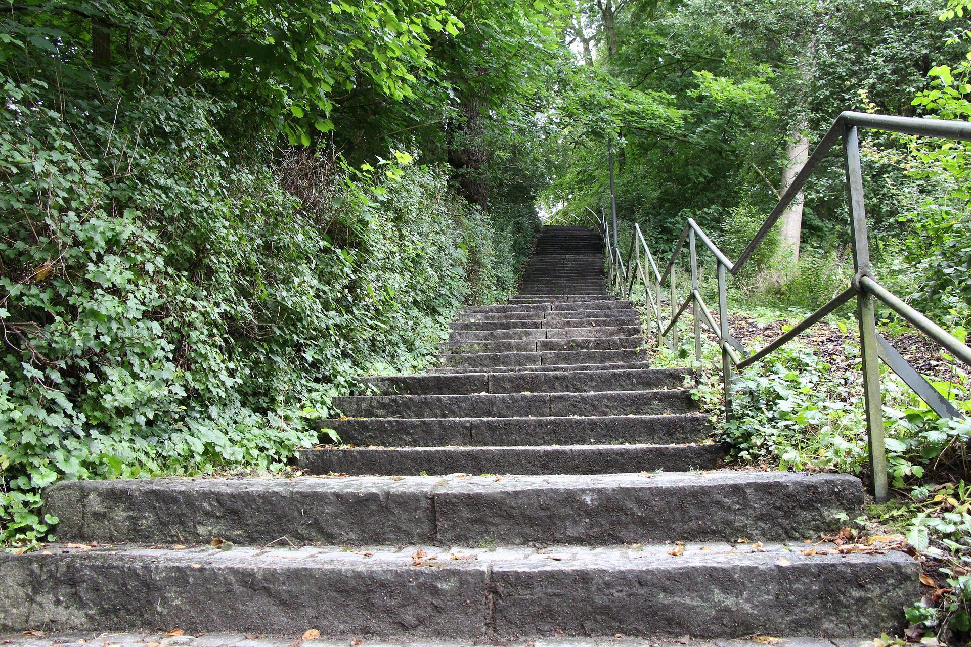 escaliers, girons d'escalier, varandilla, passage, Forest, Parc - Fonds d'écran HD - Professor-falken.com
