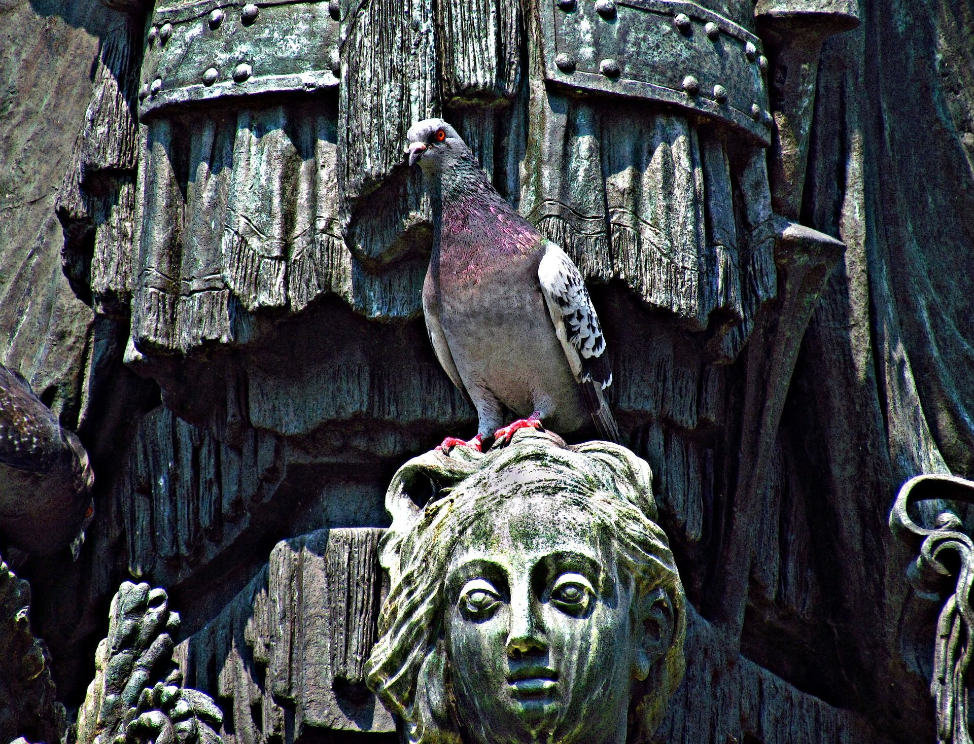 पालोमा, Ave, पक्षी, मूर्तिकला, स्मारक - HD वॉलपेपर - प्रोफेसर-falken.com