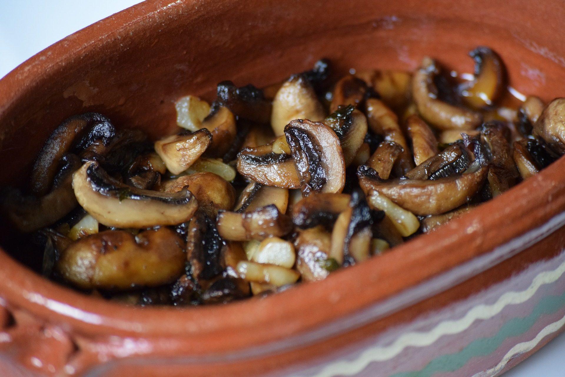 setas, cogumelos, assado, Tigela, lama - Papéis de parede HD - Professor-falken.com